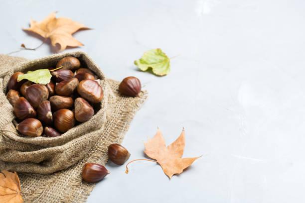 propiedades de la harina de castaña
