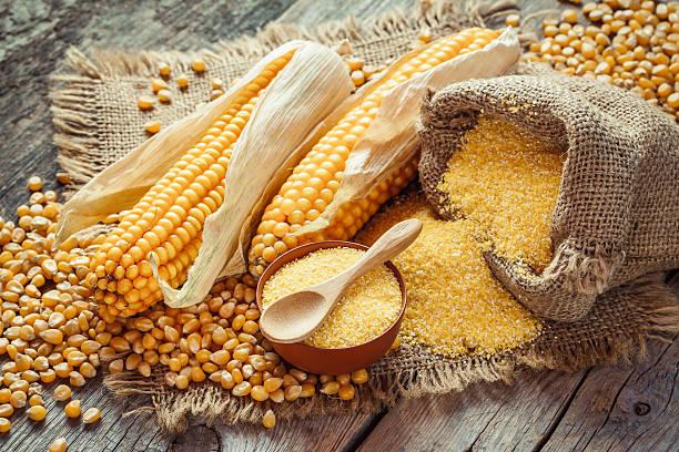 el polvo de maiz