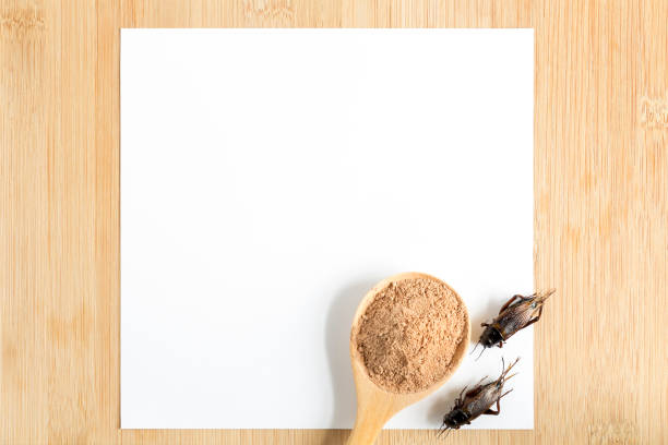 ventaja de la harina de grillo