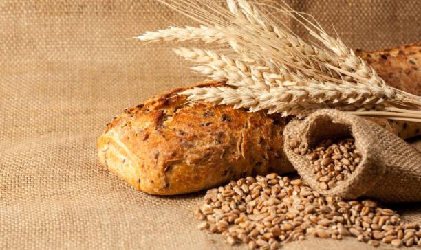 recetas con harina salvaje