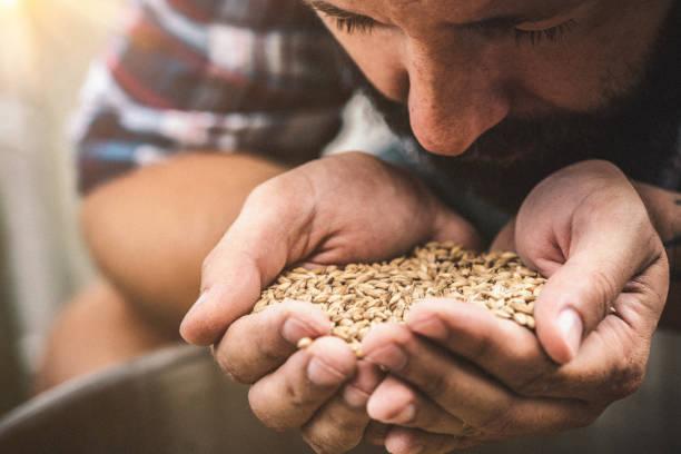 beneficios de la harina tritordeum